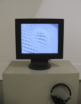 Critic As Grist, Curated by Michael Portnoy, White Box, 2000