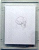 Gabriel de la Mora. Untitled. 8 ½ x 11 in. Human hair on paper. 2009.