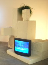 Luis Alonzo-Burkigia The Shape of Ancient Thought, 2011 Styrofoam, plaster, TV, video, book and fake plant 82x55x77 inches
