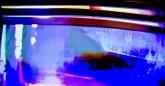 John Zieman, Weaponized Beauty: 1979 - 2012, White Box, 2012 (5) (18)