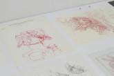 071913_HymanBloom_exhibition_RosalindaGonzalez_2727