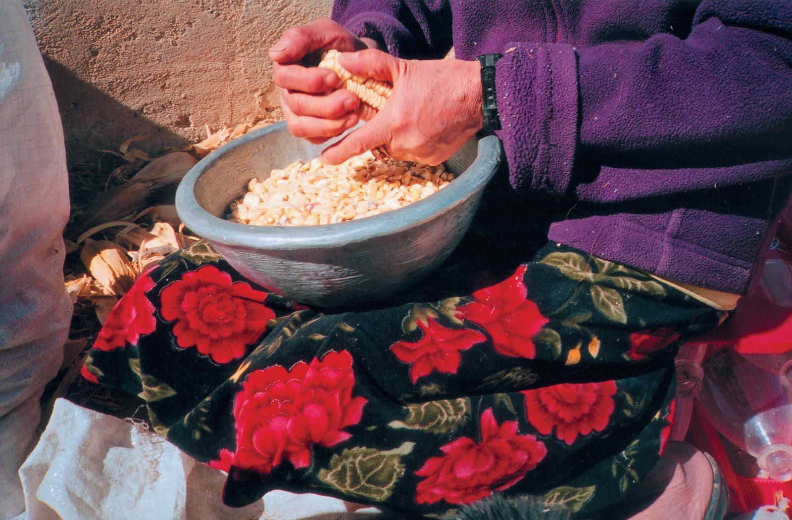 Ana Zaballata intervention, December 2004, December 2004, San Lorenzo Albarrados, Mexico