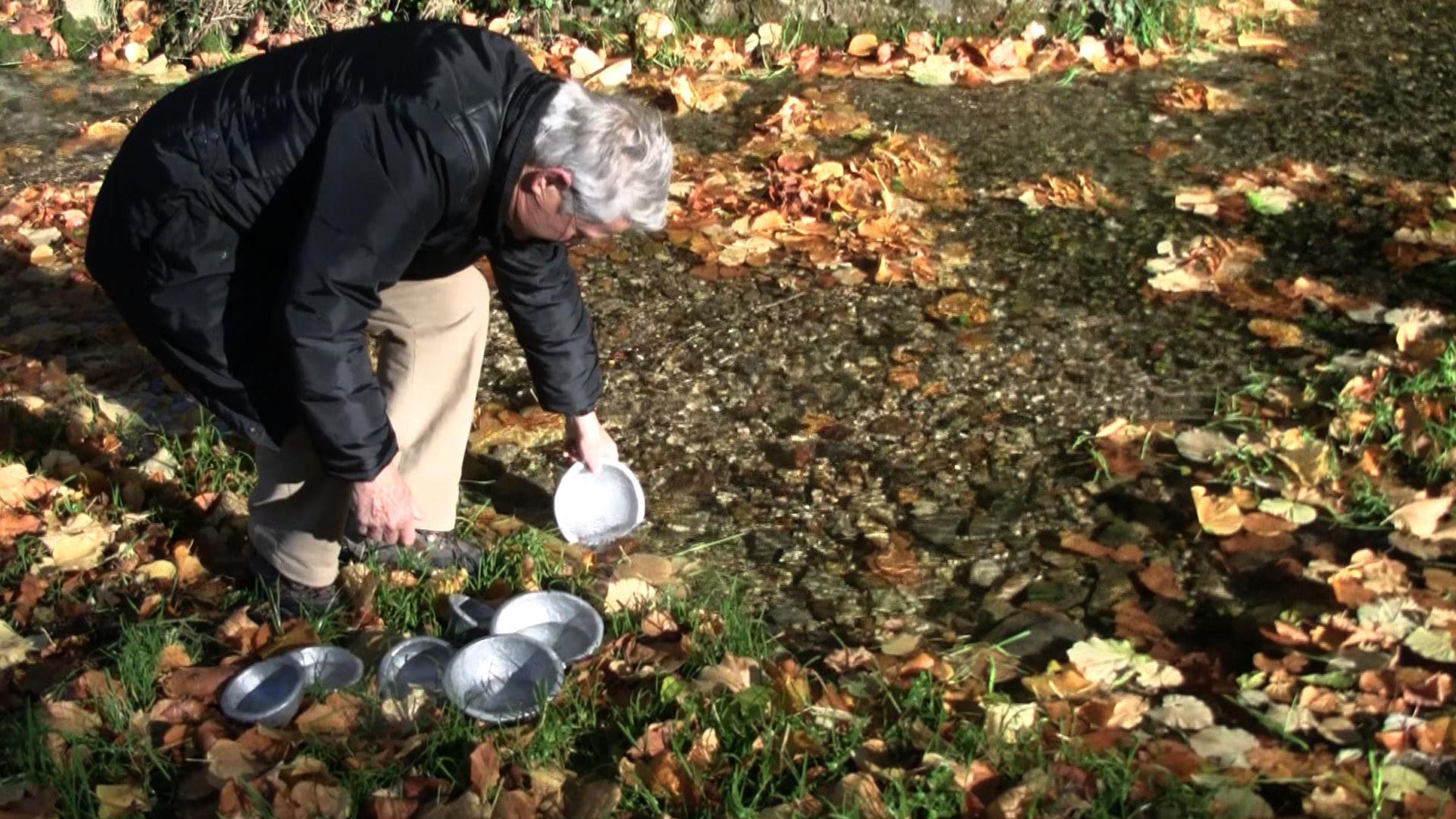 Wolfgang Becker intervention, October 2012, Sieben Quellen, Germany